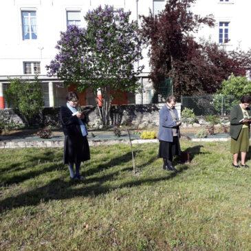Les Rameaux à la Maison-Mère à Villefranche-de-Rouergue