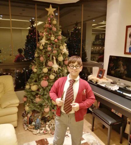 Harry Potter étudiant